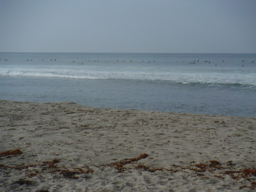 Visiting surfers at Uppers
